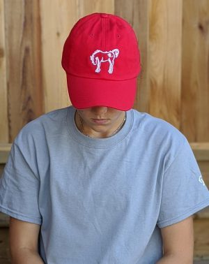 Adult Classic Hat - Red