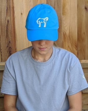 Adult Classic Hat - Turquoise